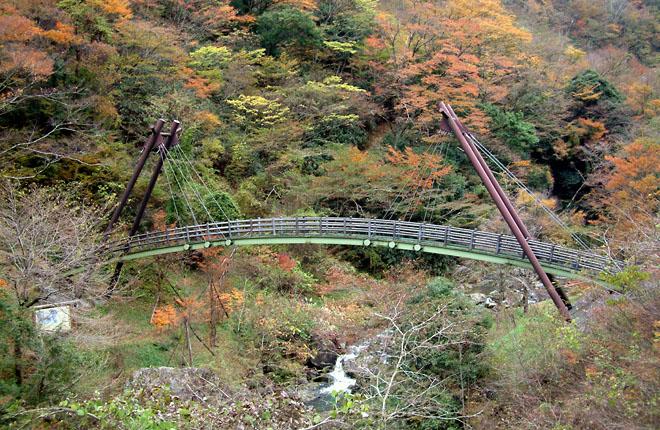 せんだん轟吊橋(熊本県八代市泉...